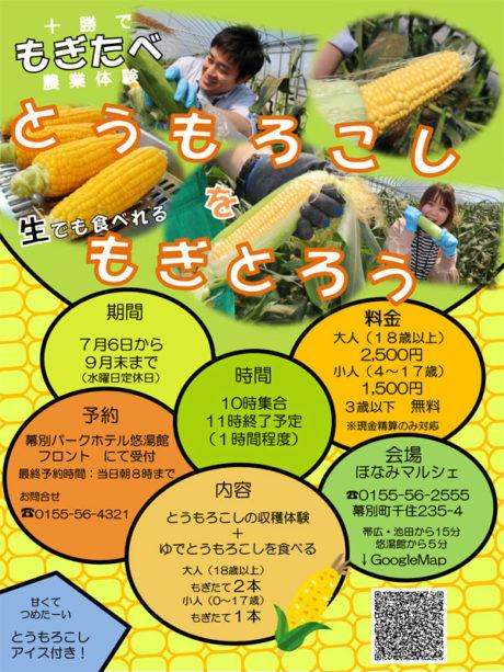 9月末まで楽しめる!十勝で「もぎたべ」農業体験